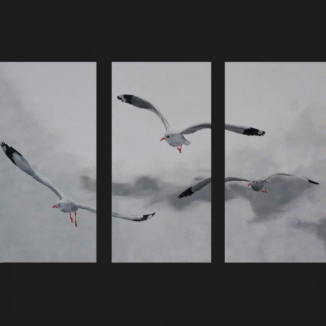 Drie Meeuwen