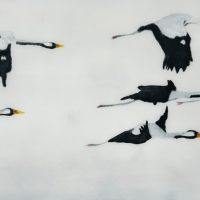 Flight of Cranes II D scaled