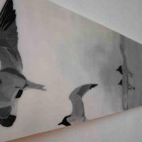 Flight of Terns  C LR
