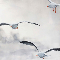 """Drie Meeuwen"" Schilderij Painting Artwork Kunstwerk Kay Sleking"