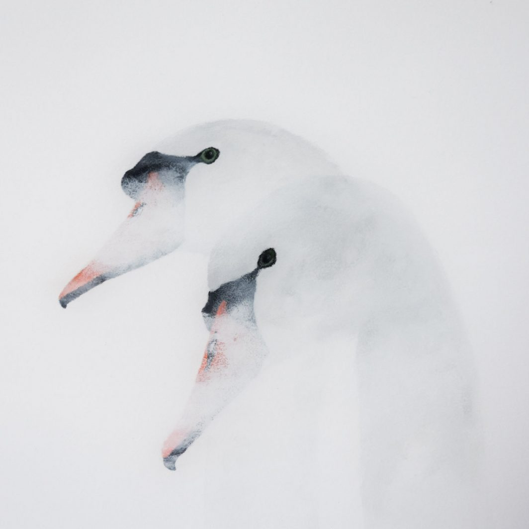 White Series Swans Artwork Kunstwerk Schilderij Painting